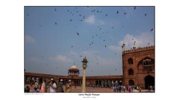 India 2014-04