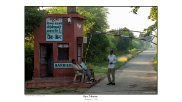 India 2014-15